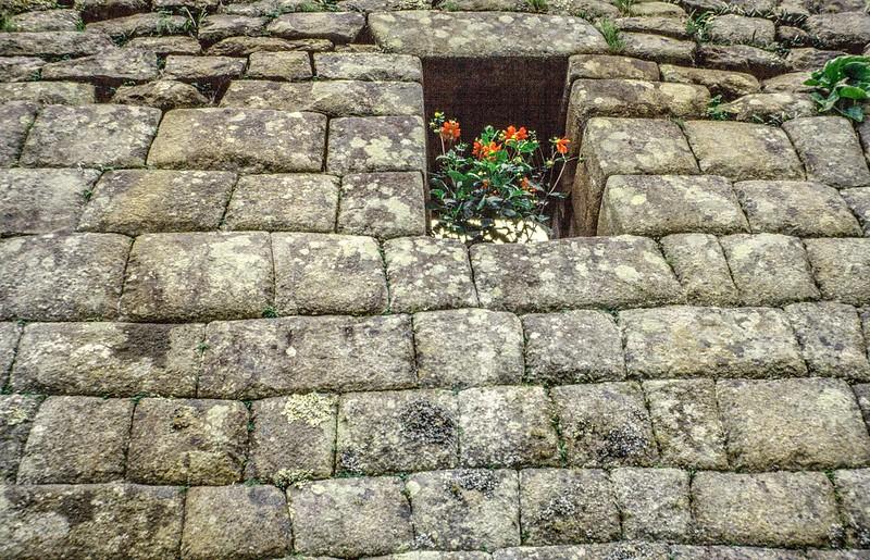 Machu Pichu-No mortar, just precision stone cutting