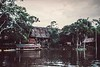 Amazon Jungle Camp-Several miles downriver from Iquitos-A small estuary of the Amazon, filled with pirhana