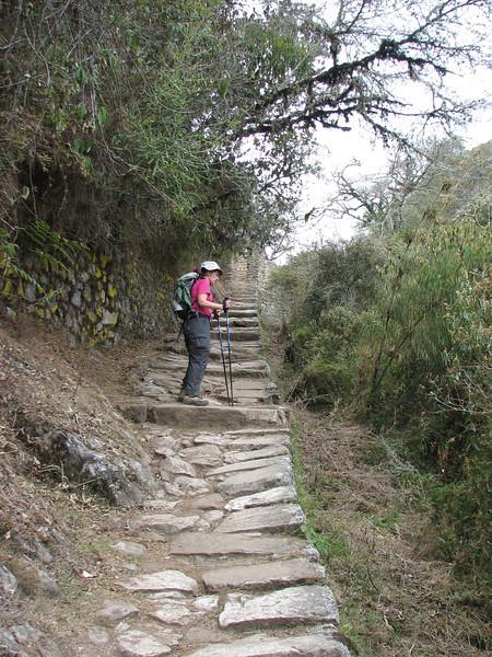 Heading toward the Inti Punku, the Sun Gate
