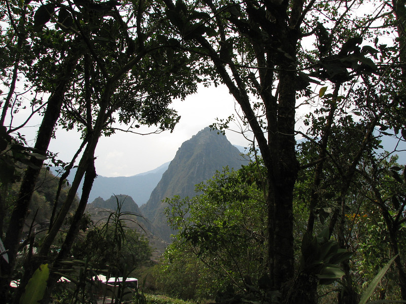 Looking back at Wayna Picchu from the hotel garden