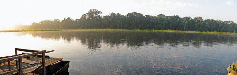 Oxbow lake off the Tambopata in the Amazon
