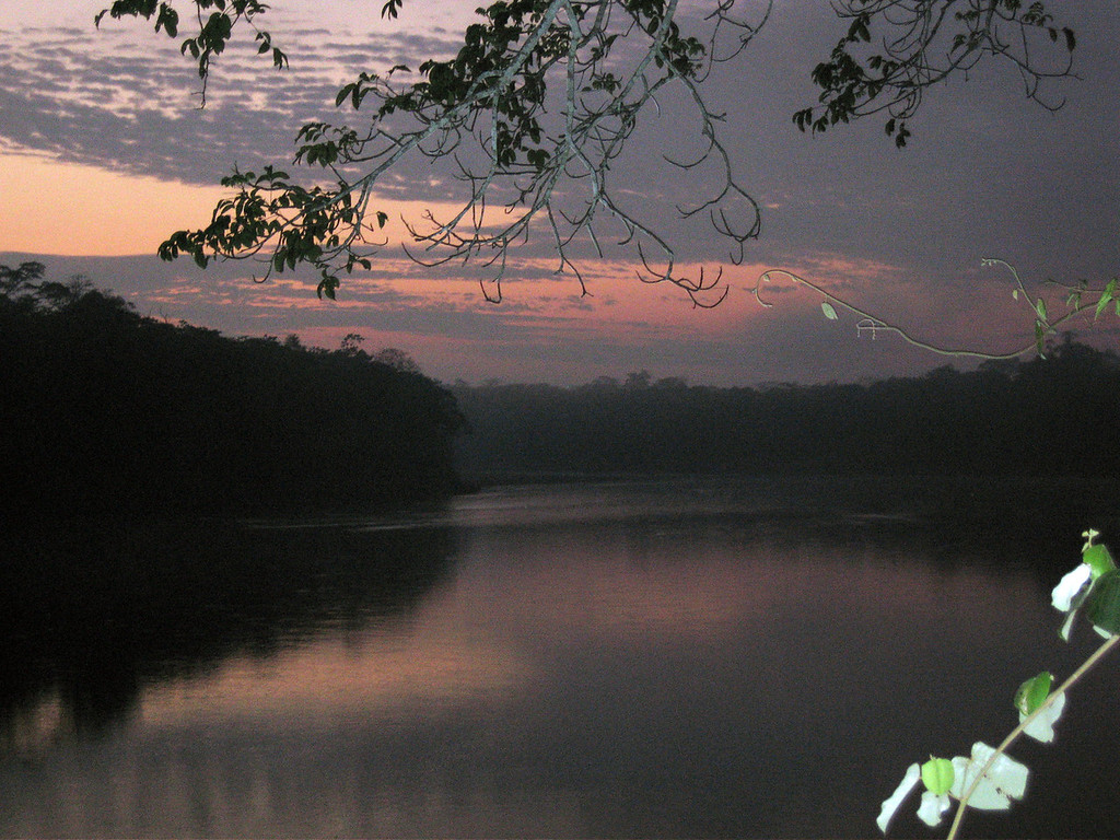First morning on the Tambopata at 5am to see the animals