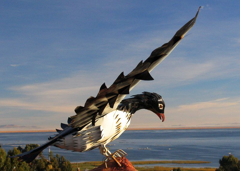 Condor on the roof of the Tapikala hotel (Chucuito) at sunrise over Lake Titicaca