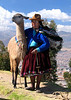 Wizened woman with Llama, Peru