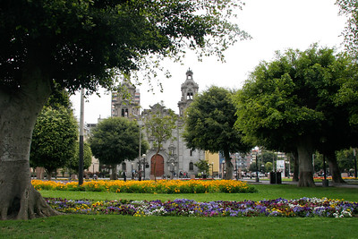 Flowers in the Parque Kennedy with the Iglesia de la Virgen Milagrosa in the background.