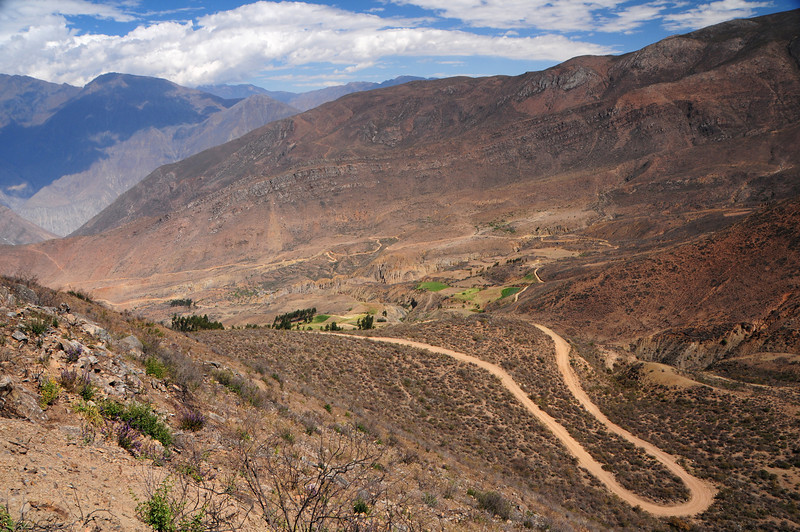 Ancos - La Pampa road. Peru