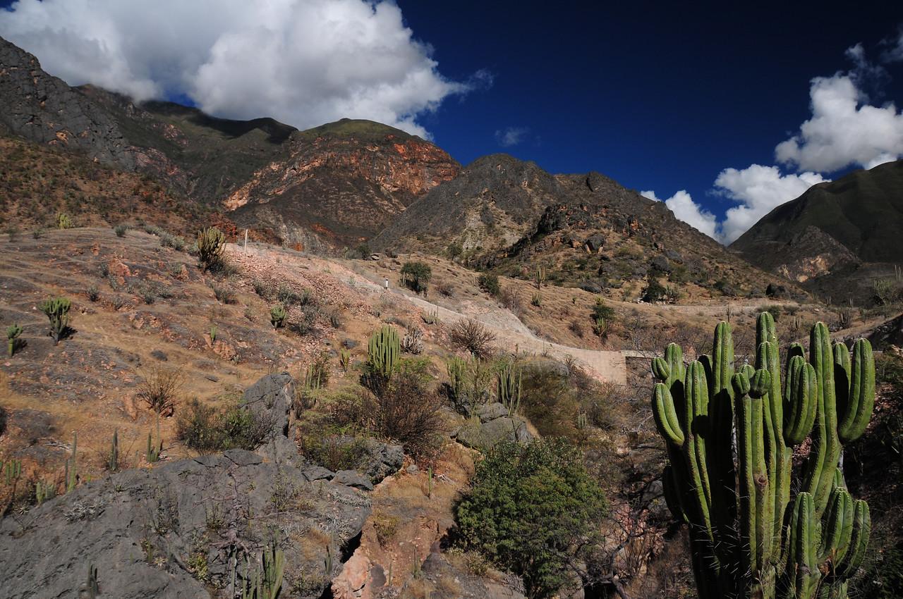 PE-08B.  Chachapoyas - Celedin Road. Peru