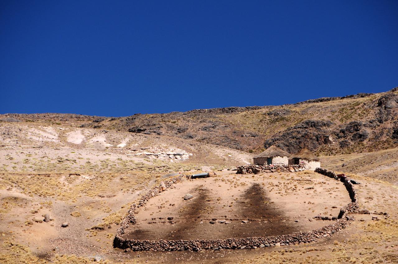 Llama finca along the Cayarani - Suyckutambo - Caylloma road. Peru
