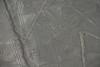 Nazca Line - The spider