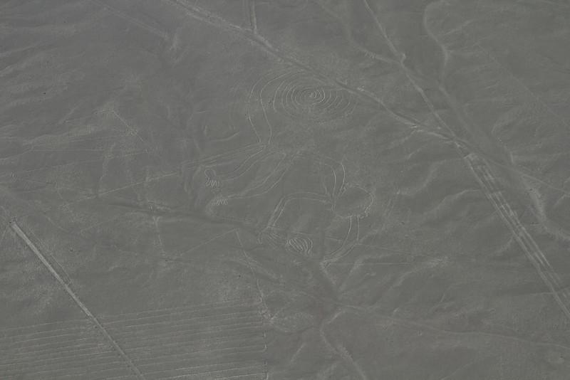 Nazca Line - El Mono, or the Monkey