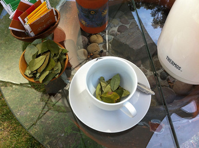 Coca leaf tea. The coca leaves are beneficial natural stimulants similar to coffee. Unfortunately these leaves are also the source for cocaine and are therefore banned from almost all countries except Peru, Colombia and Bolivia. When chewed they have a local analgesic property, it makes the tongue numb.