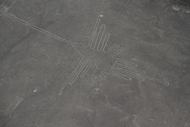 Nazca Line - The hummingbird