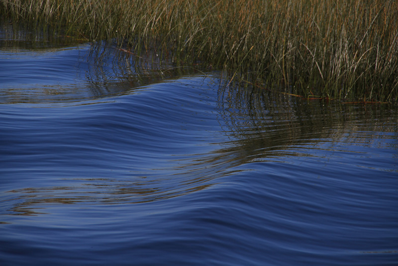 Waves in the reeds as we cruised Laka Titicaca