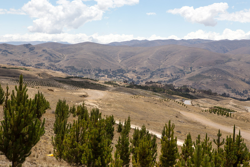 andes-4239