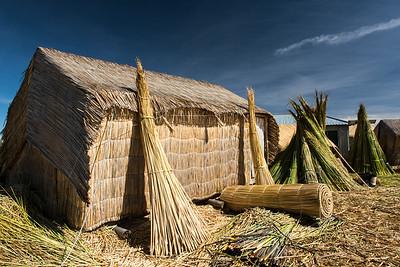 Tortola Reeds drying.