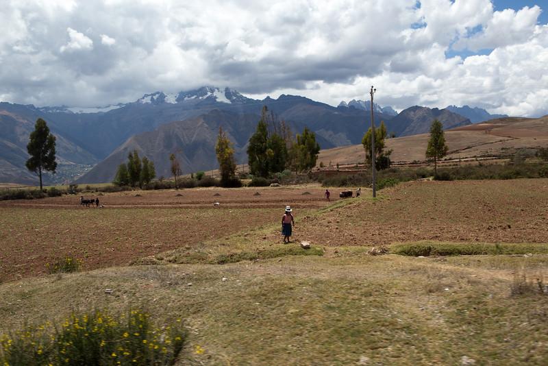 Cusco-3910