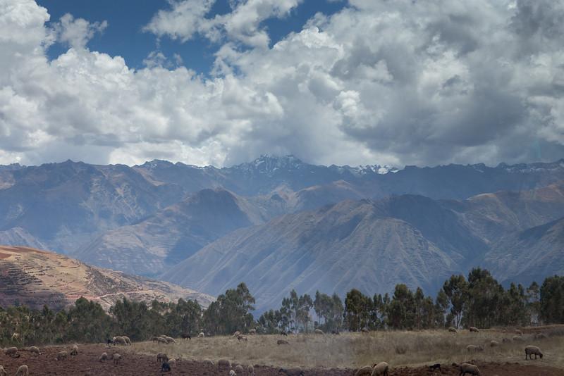 Cusco-3895