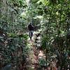 112 1 Tahuayo trail_DSC01034