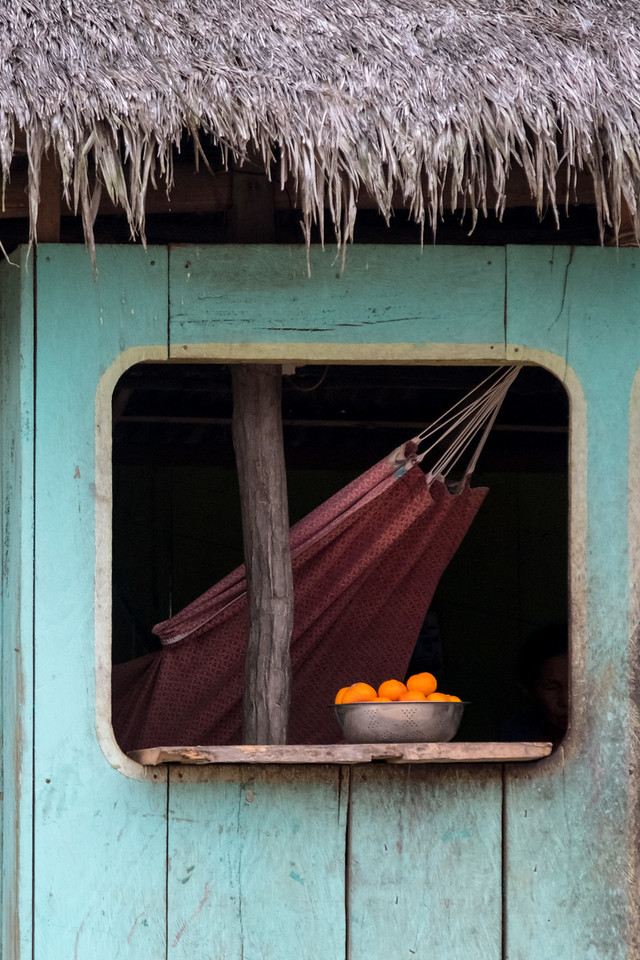 Village hut and hammock