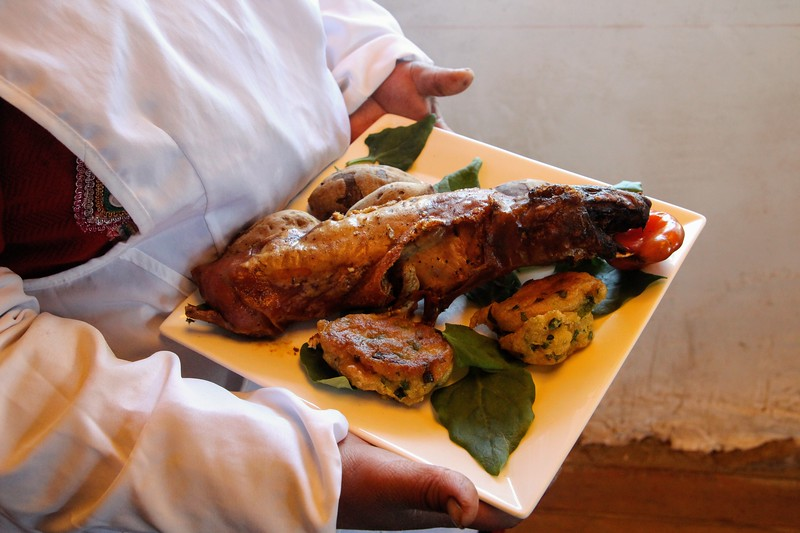 Roasted cuy or guinea pig and corn tortillas on a platter