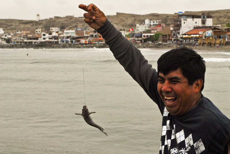 Happy artisanal fisherman with behind him the former fishing village of Huanchaco and today the most important beach resort of Trujillo.<br /> <br /> Pescador artesanal feliz con detrás de él el antiguo pueblo de pescadores de Huanchaco, hoy en día el balneario más importante de Trujillo. <br /> Y para los cusqueños: ¿No les parece a Ciro del Kamikaze?<br /> <br /> Gelukkige artisanale visser met achter zich het voormalige vissersdorp Huanchaco en tegenwoordig de belangrijkste badstad van Trujillo. <br /> <br /> Joyeux pêcheur artisanal avec derrière lui l'ancien village de pêcheurs de Huanchaco et aujourd'hui la station balnéaire la plus importante de Trujillo.