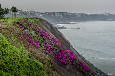 Lima is above the cliffs which fall off to the sea.  The Humbolt current travels along the coastline here so there is often sea fog and drizzle.  It seldom rains hard in the summer.  Lima can be cool at times.