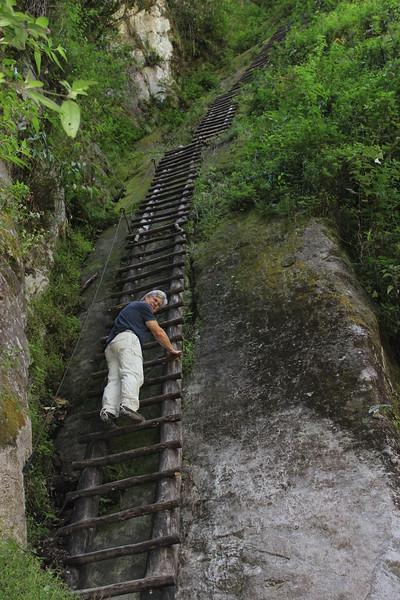 big ladder at Machu Pichu