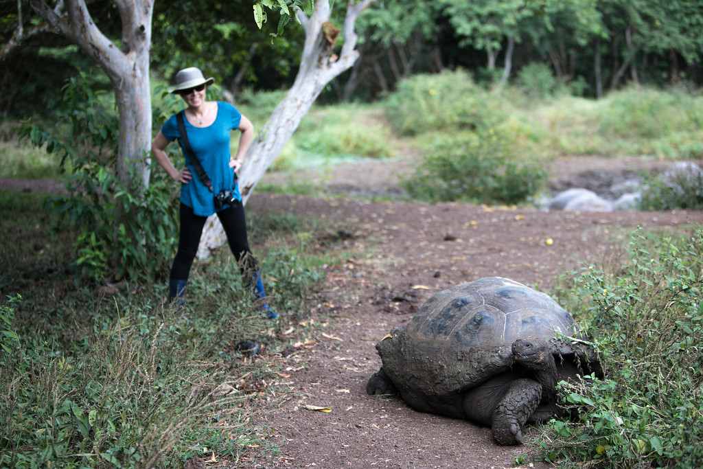 Lisa and the Giant Tortoise
