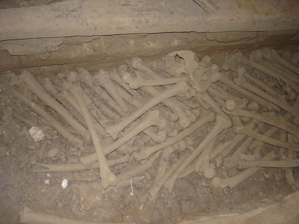 Catacombs, bones in the Cathedral