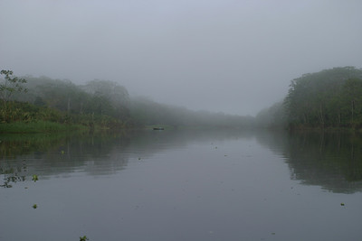 Amazon Basin, Maranon River Trip Day 2 (25 May 08)