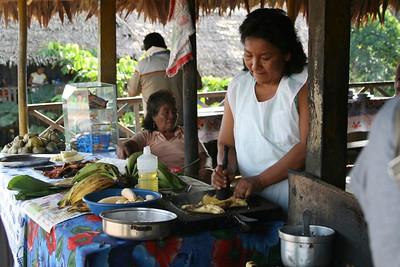 Amazon Basin, Peru: Rainforest
