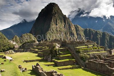 Machu Picchu-584