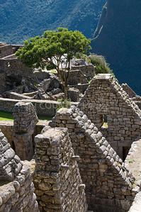 Machu Picchu-123