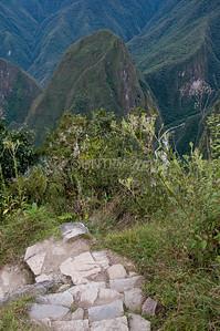 Machu Picchu-58
