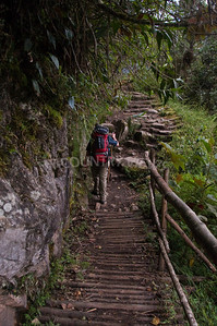 Machu Picchu-9