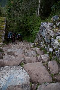 Machu Picchu-11