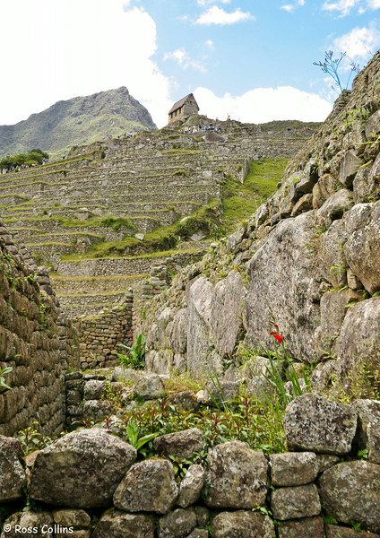 Machu Picchu, Peru, January 2005