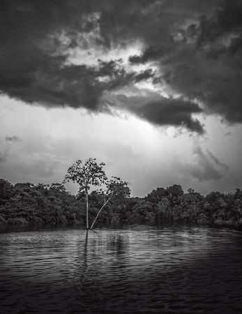 San Pedro Harbor-Amazon
