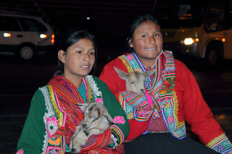 3376 Little girls with their baby Llamas in Cusco.