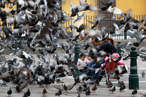Lima 3271<br /> This family was feeding pigeons in the Courtyard of the San Franciscan Monastery in Lima.
