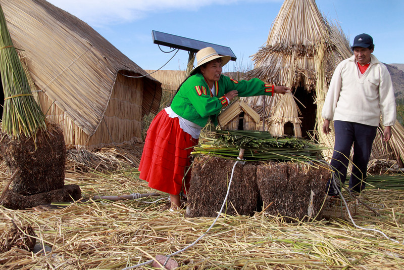 Titicaca 5646<br /> Demonstrating how the Floating Islands are built. The first item is the Khili, a 1 to 2 meter thick dense totora roots intertwined. Then a wooden stake with a rope anchored to the floor of the lake. Then several layers of Totora reeds.