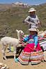 Peruvian Girl with White Baby Alpaca