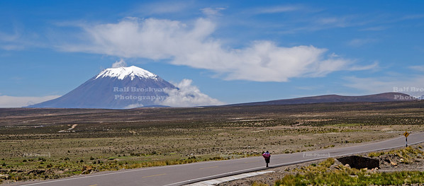A local woman, carrying a heavy bundle, walks the lone road in the high plains of Pampa Canahuas National Reserve near Arequipa, Peru. The majestic El Misti volcano (5,822 metres or 19,101 ft above sea level), covered with a seasonal snow cap dominates the background.
