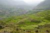 Colca Canyon in Southern Peru