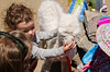 Children petting a White Baby Alpaca