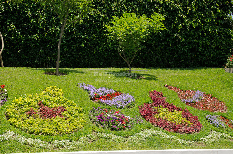 Nice flower arrangement in Parque de la Reserva, Lima, Peru