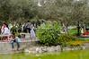 El Olivar Grove Park in San Isidro