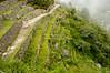 Inti Punku