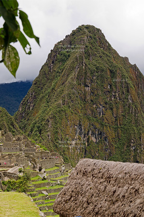 The mountain Huayna Picchu, or Wayna Picchu, which means Young Peak in Quechua, towers over the ruins and terraced fields of Machu Picchu, Peru