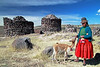 Sillustani 5798<br /> Some of the local Colla people will pose for pictures with their alpacas.